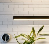 Slik LED Up & Down Linear Pendant / 2 Finishes
